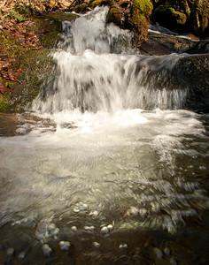 Bell Creek Cascade
