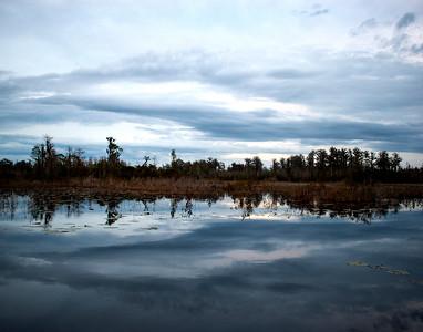 Monkey Lake Reflections Okefenokee