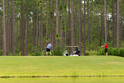 Taking Turns Golfers at Laura S Walker