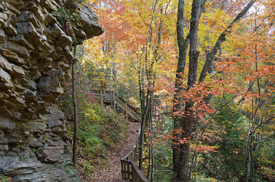 Autumn at Cloudland Canyon State Park