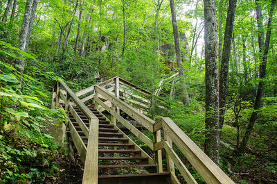 Cloudland Canyon State Park Steps