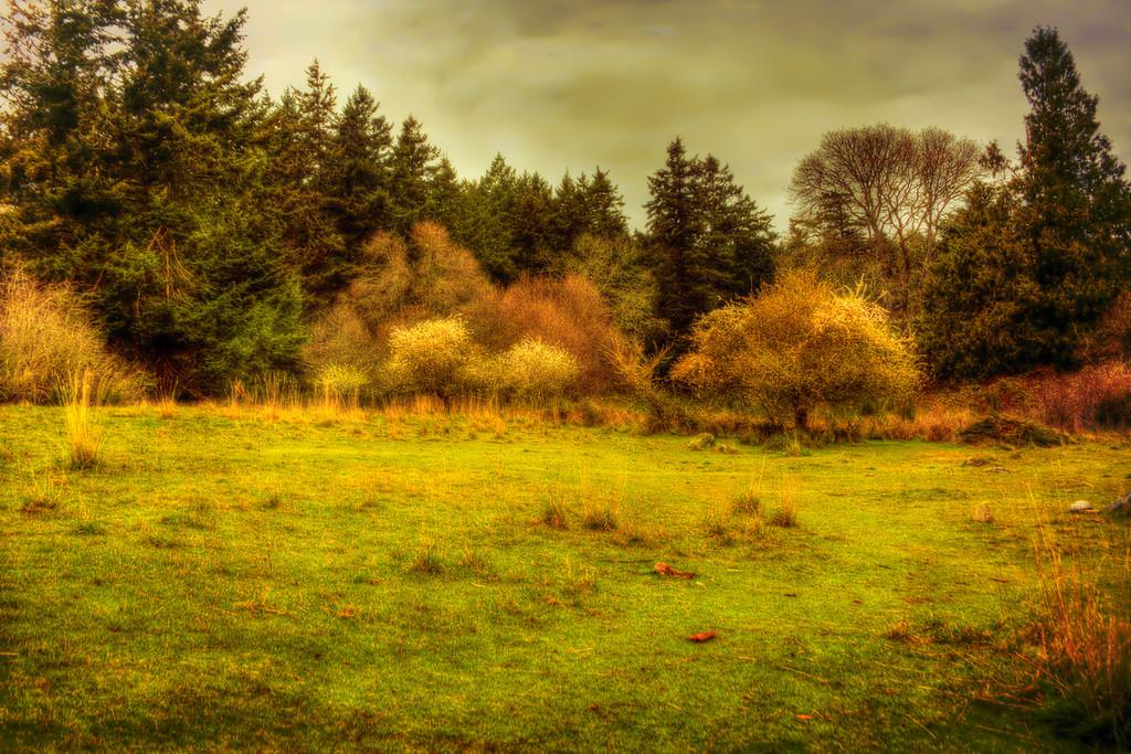 Drumbeg Meadow