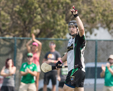 Junior B Hurling Semi-Finals: Twin Cities v Madison