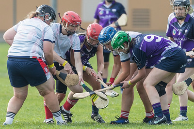 Junior Camogie Finals: Liberty Gaels v Cú Chulainns