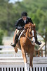 GALA SPRING FIESTA 04 26 2007 HUNTER RING 1 099