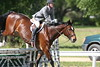 GALA SPRING FIESTA 04 26 2007 HUNTER RING 1 051