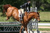 GALA SPRING FIESTA 04 26 2007 HUNTER RING 1 032