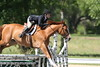 GALA SPRING FIESTA 04 26 2007 HUNTER RING 1 068