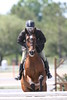 GALA SPRING FIESTA 04 26 2007 HUNTER RING 1 118