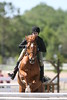 GALA SPRING FIESTA 04 26 2007 HUNTER RING 1 034