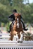 GALA SPRING FIESTA 04 26 2007 HUNTER RING 1 072