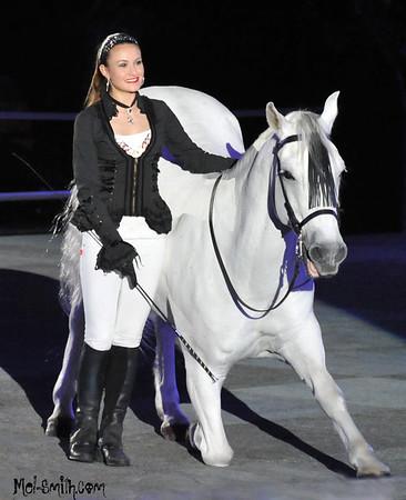 Gala of the Royal Horses  Feb 2015