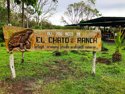 El Chato - Tortoise Reserve
