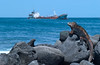 Galapagos fuel ship Jessica gone aground in Wreck Bay, San Cristobal Island Jan. 18, 2001