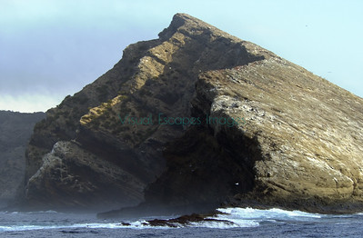 33174 isla Tortuga