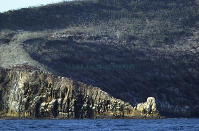 33253 Isla Cuatro Hermanos