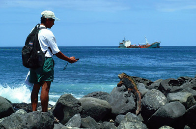 Intertidal survey before Jessica oilspill began