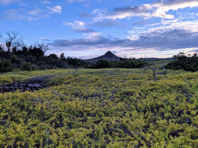 Galapagos Islands Trip - Volcano