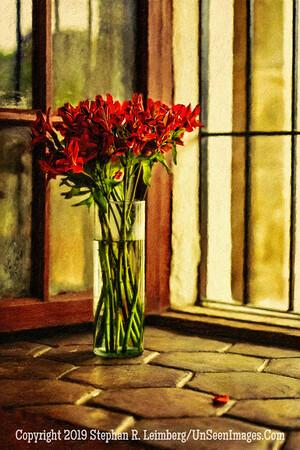 Flowers in Quito Window Copyright 2020 Steve Leimberg UnSeenImages Com _DSC5271