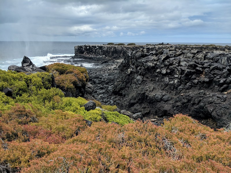 Galapagos Islands Trip - colorful island