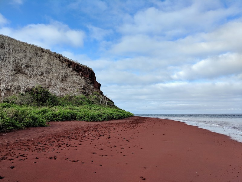 Galapagos Islands Trip - Red beach