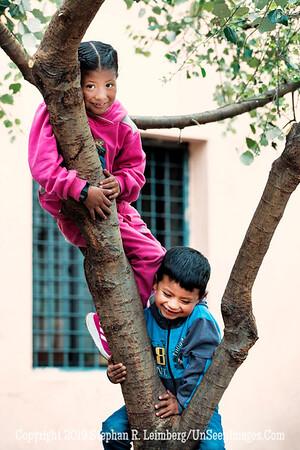 Two Children Climbing Tree Copyright 2020 Steve Leimberg UnSeenImages Com  _DSC5376
