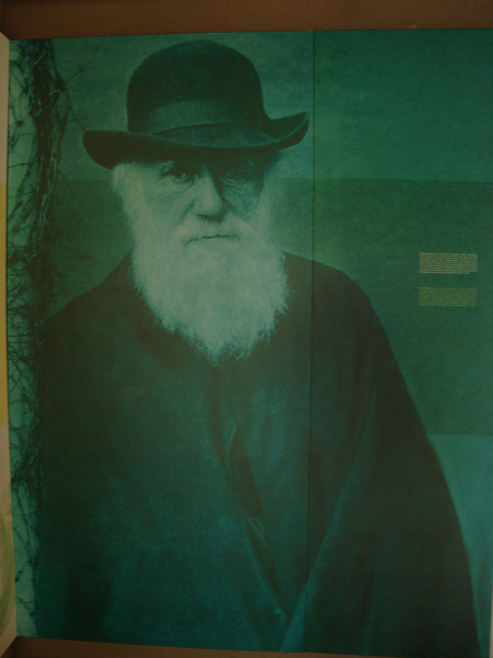 Darwin graphic