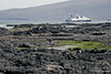 Volcanic lava with Celebrity Xpedition cruise ship in back ground on Santiago Island~Galapagos, Ecuador