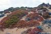 Colorful landscape at Bartolome Island~Galapagos, Ecuador