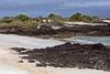 Bachas Beach with cruise mates on Santa Cruz Island~Galapagos, Ecuador