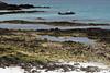 Zodiac at Bachas Beach on Santa Cruz Island