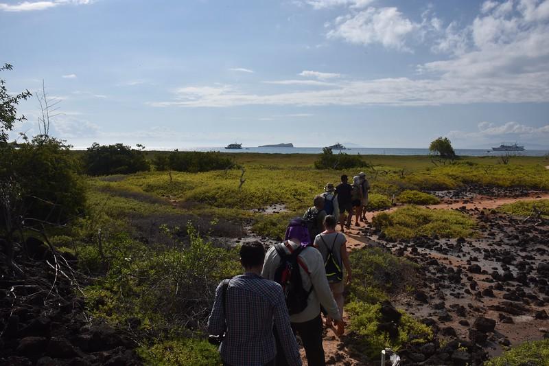Cerro Dragon, Galapagos