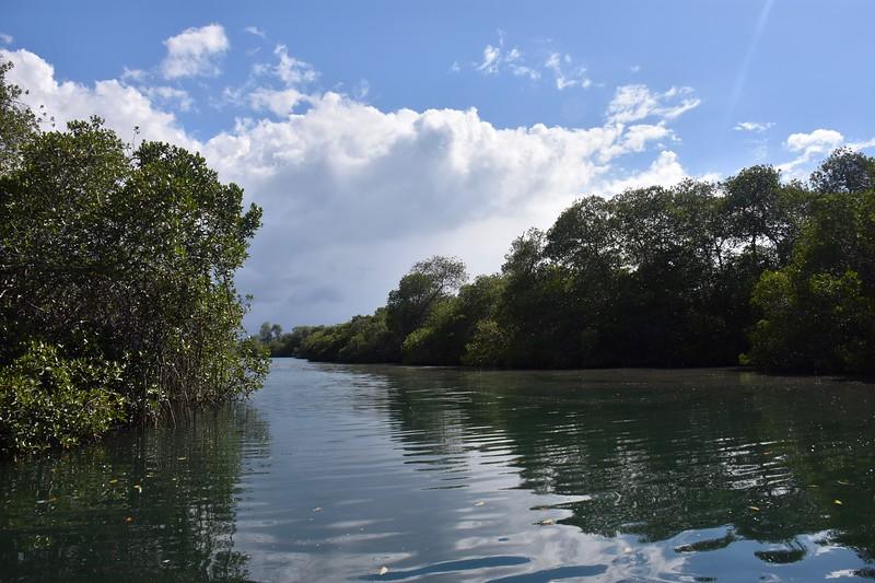 Elizabeth Bay, Galapagos