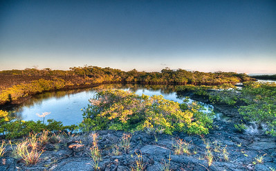 """An HDR image of a spectacular """"oasis"""" within a vast, arid field of lava."""