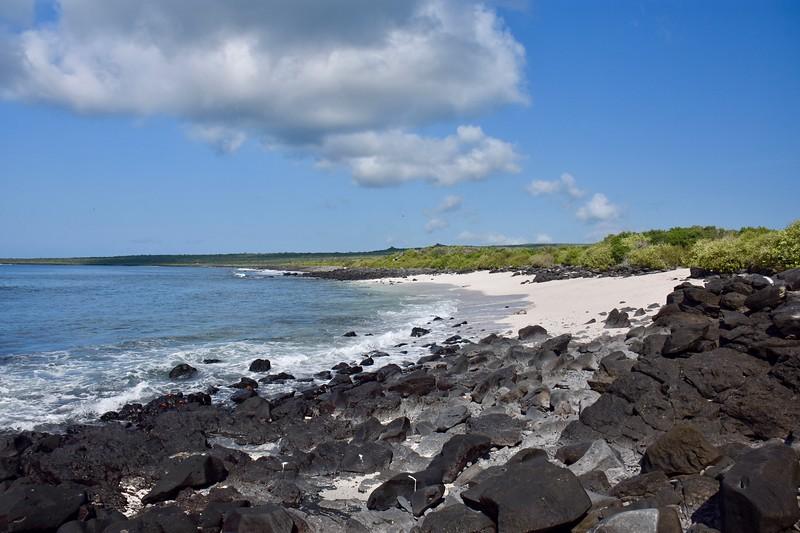 Punta Suarez, Galapagos