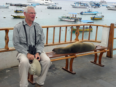 Sea Lion - George and friend DSCN0960ed