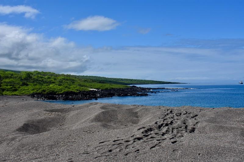 Urbina Bay, Galapagos