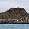 Galapagos06-0675