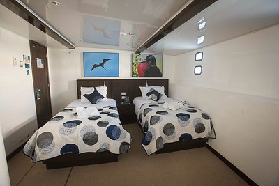 Twin Cabin on the Royal Galapagos