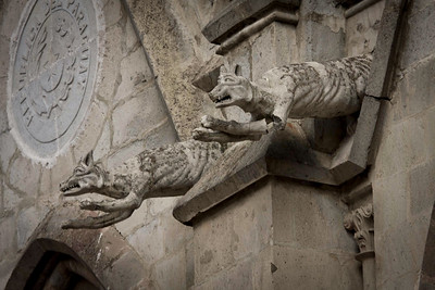 Native Ecuadorian Animal Gargoyles on the Basilico del Voto Nacional