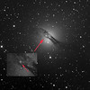 Supernova in Centaurus A
