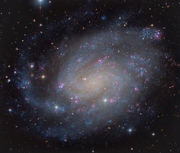 NGC300