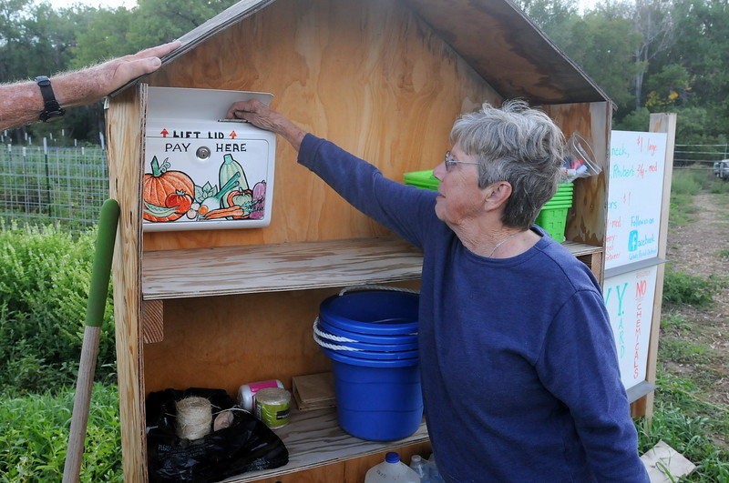 Sheila Miller pays for the vegetables she picked at Glade Road Orchard west of Loveland on Wednesday afternoon, Aug. 22, 2018. (Photo by Craig Young / Loveland Reporter-Herald)