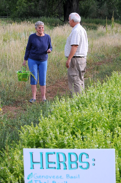 Sheila Miller talks Wednesday with Dave McMurtrey, owner of Glade Road Orchard, after filling her basket with fresh produce that she picked at the farm west of Loveland on Wednesday afternoon, Aug. 22, 2018. (Photo by Craig Young / Loveland Reporter-Herald)