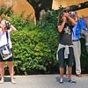 Fotógrafos em Barcelona