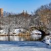Inverno em Central Park