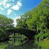 Ponte em Central Park
