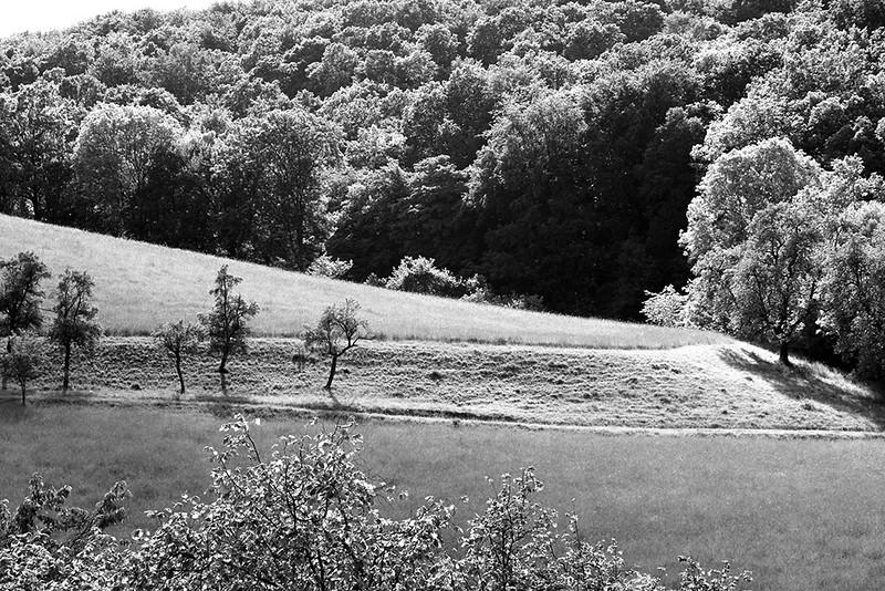 Campo na Baviera