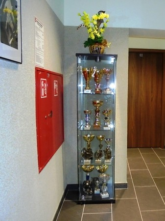 Puchary wygrane przez wychowanków Domu Dziecka nr 3 z ul. Dalibora 1