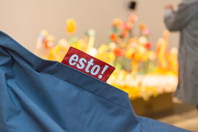 www.Foto40.com